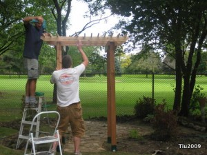 Working on the arbor