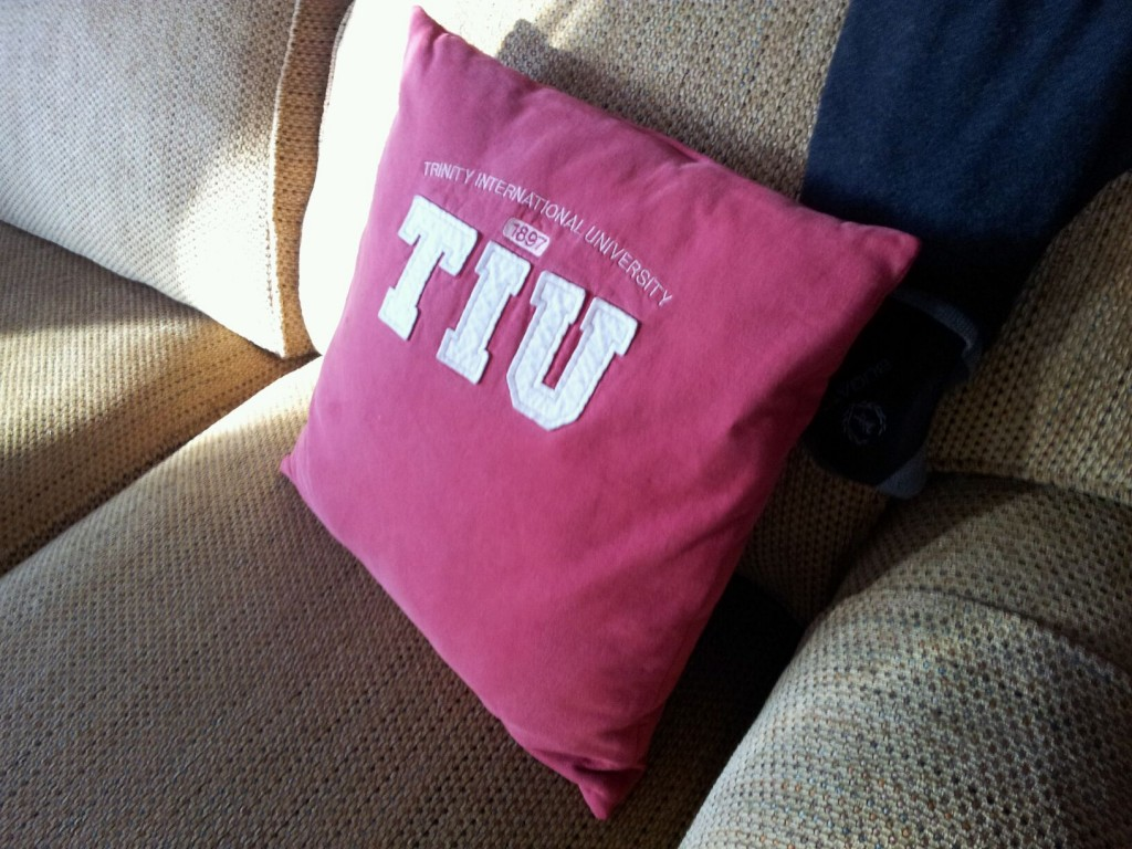 Upcycled Sweatshirt Pillow